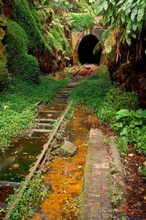 Abandoned Railway and Tunnel in Australia x