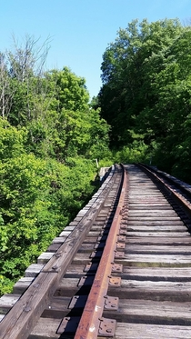 Abandoned Railway Bridge in Ohio OC