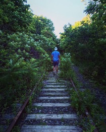 Abandoned railway disappearing into the forest Toronto Canada