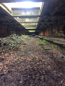 Abandoned railway tunnel I visited a few days ago in Glasgow Scotland Botanic Gardens Railway Station