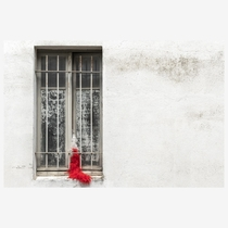 Abandoned red feather boa in abandoned flat