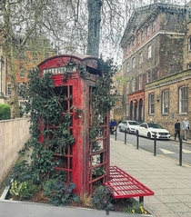 Abandoned Red Telephone box London Now a planter