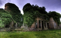 Abandoned redbrick buildings being reclaimed by nature