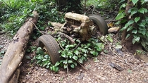 Abandoned remnants of a vehicle in Hawaii