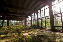 Abandoned resort in the Catskills NY Human for scale    Adam Salberg