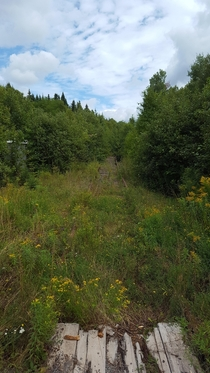 Abandoned right of way to the Potash Mines of Sussex NB