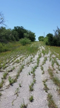 Abandoned road in central Texas