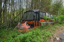 Abandoned roadside restaurant in Japan shaped like NekoBus from My Neighbour Totoro