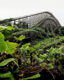 Abandoned roller coaster being taken over by nature