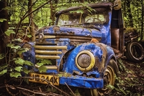 Abandoned rusted wrecked car in the wood