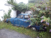 Abandoned Saab  in Cornwall UK