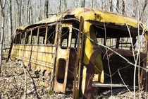 Abandoned school bus in a nearby forest
