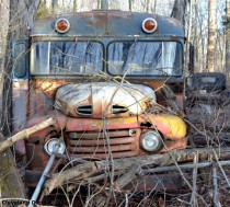 Abandoned school bus in the woods nowhere near a road Bloomington Indiana USA