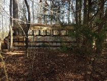 Abandoned school bus on the Tombigbee National Forest near Van Fleet Mississippi x
