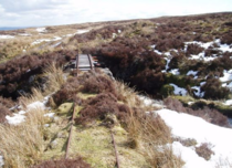 Abandoned Scottish Railway  x