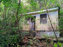 Abandoned shack in the jungle USVI  more in comments