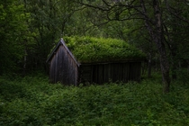 Abandoned shed in the Norwegian forest