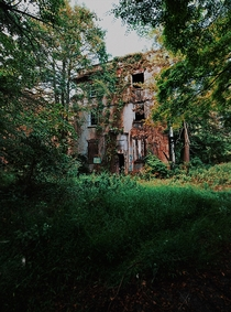 Abandoned shell of a hotel that never opened in the middle of an overgrown road