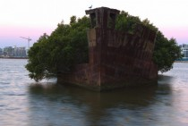 Abandoned ship Homebush Bay Australia x