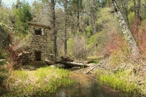 Abandoned smokehouse and weir - Doane Creek - Palomar Mountain State Park California