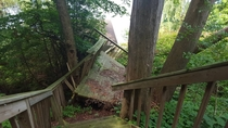 Abandoned staircase that has been mangled by nature