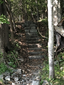 Abandoned stairs to a long forgotten estate