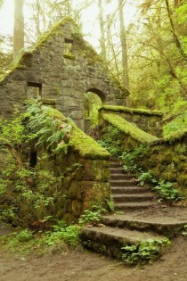 Abandoned Stone House in Balch Creek Canyon Portland Oregon