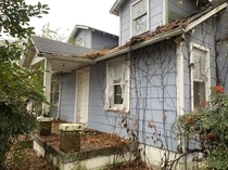 Abandoned suburban houses are weirdly compelling