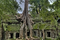 Abandoned Temple in Cambodia