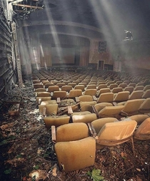 Abandoned theatre that looks like something from the last of us