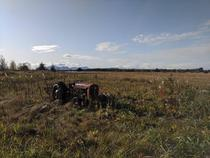 Abandoned tractor in Gustavus AK