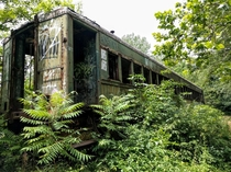Abandoned train car near Washingtons Crossing NJ - by insta davidleestanwick
