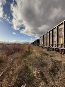 Abandoned train sitting on an unused line  windsor NS