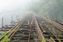 Abandoned train tracks in Santo Andr SP Brazil  by Vanderlei Gomes