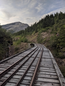 Abandoned train trestle bridge deck My st picture posted of the trestle was so well received I thought you might enjoy another perspective This is from the far side yes I walked across looking back the way I came Location is near Cadomin Alberta Canada