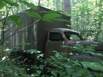 Abandoned truck in the woods I found