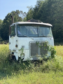 Abandoned Truck North Carolina Wife thought I was nuts pulling over and running into a field to snap this pic for you guys lol