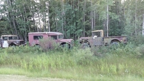 Abandoned trucks along a highway