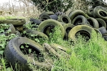 Abandoned tyres in the Irish countryside