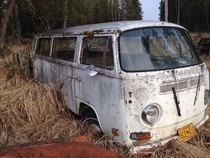 Abandoned VW bus