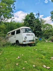 Abandoned VW Combi in my dads garden France