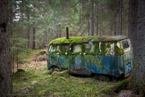 Abandoned VW van in the woods