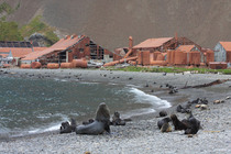 Abandoned whaling station South Georgia and the South Sandwich Islands