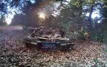 Abandoned wreck of a car deep in the woods somewhere in the Santa Cruz hills