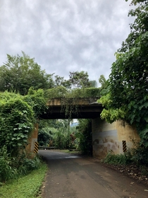 Abondoned agricultural viaduct spanning a road still in use Hawaii