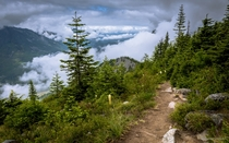 Above the clouds on the Bandera Mountain Trail Washington state
