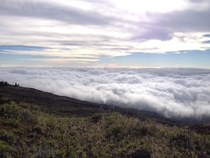 Above the clouds on the road up to the Haleakala Summit Maui Hawaii