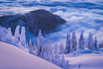 Above the clouds on the summit of Mt Seymour British Columbia Canada  Photo by Adam Gibbs xpost from rTrueNorthPictures