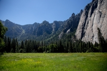 Absolute tranquility El Capitan Meadow Yosemite Valley