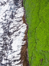 Abstract landscape - a glacier reaching out to green moss in Iceland  - more of my abstract landscapes on insta glacionaut
